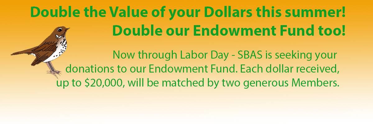 Endowment-Double.jpg