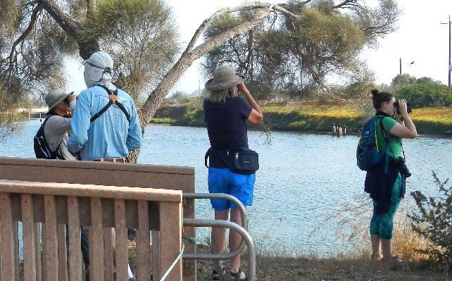 people bird watching at Goleta-Beach-Park